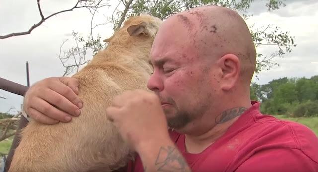 Он думал, что его собаку унесло торнадо. Но в дело вмешался собачий ангел-хранитель