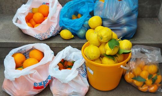 Ο Δήμος Άνδρου συγκεντρώνει τροφίμα για φιλανθρωπικό σκοπό