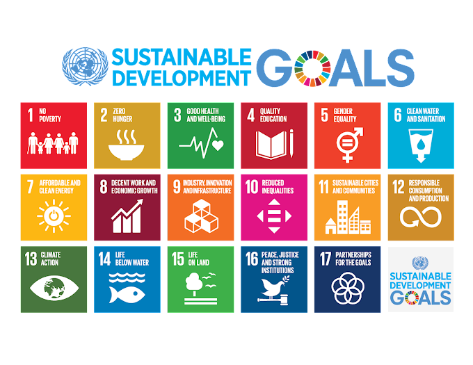The UN Sustainable Development Goals You Should Know Before Applying For A Grant In Nigeria (Full List & Explanations)
