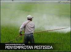 Mengenal Jenis - jenis Pestisida menurut sasaran Hama yang akan dikendalikan