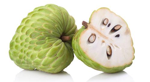 ماهي فوائد فاكهة القشطة او الخرمش