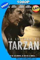 La Leyenda de Tarzan (2016) Latino HD 1080P - 2016
