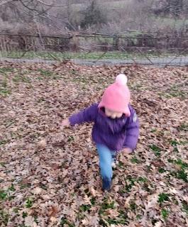 Rosie running through the leaves