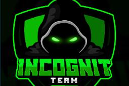 IncoGnit Team (Live IPTV) Kodi Addon: Reviews, Info, Install Guides & Updates