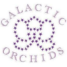 Galactic Orchids