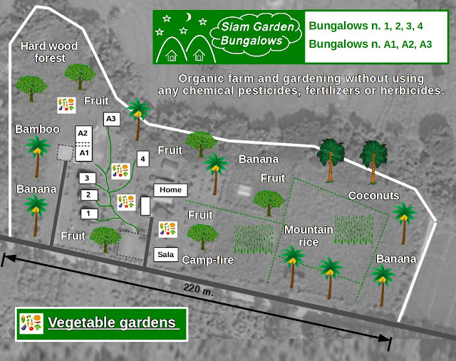 permaculture Thailand