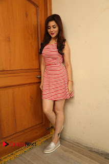 Actress Ragini Nandwani Pictures at Siddhardha Movie Interview  0338.JPG