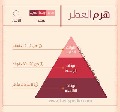 الهرم العطري للعطور fragrance pyramid