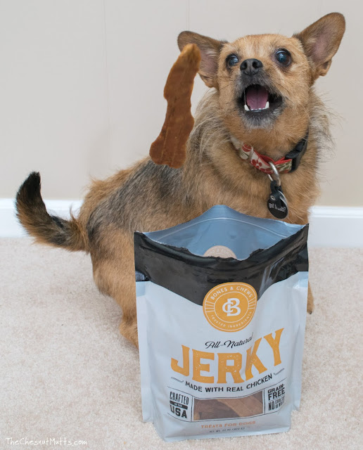 Mini Review: Bones & Chews Jerky Dog Treats