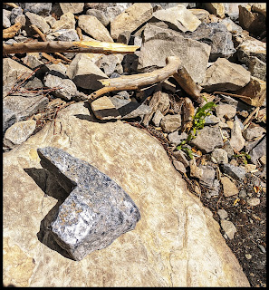 Heart Shaped Rock Found on Lost Creek Trail