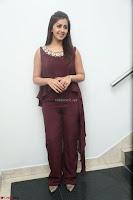 Nikki Galrani in a Brown Shining Sleeveless Gown at Nakshatram music launch ~  Exclusive 100.JPG
