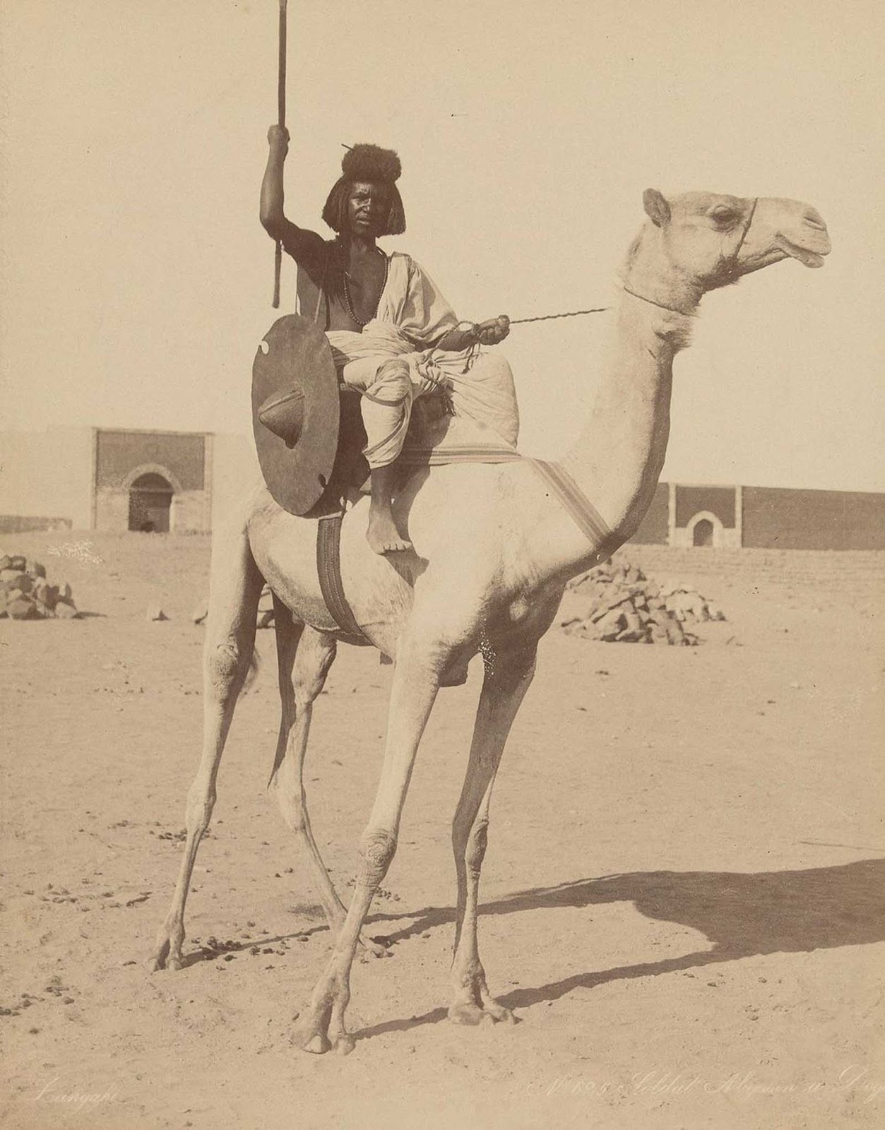 Bicharin soldier on a camel.