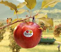 """Val Venosta concorso """" Primavera 2021 """" : vinci 90 Gift Card da 50€"""