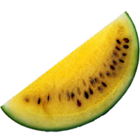 yellow watermelon slice fruit icons