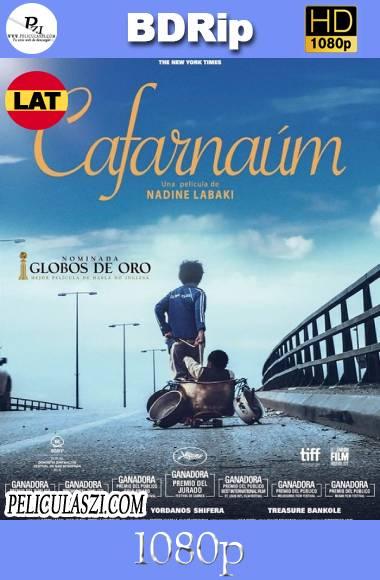Cafarnaúm: La Ciudad Olvidada (2018) HD BDRip 1080p Dual-Latino VIP