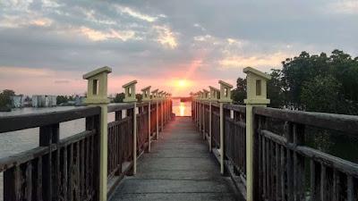 Salahsatu sarana rekreasi di Pekalongan yaitu mangrove park