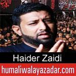 https://www.humaliwalayazadar.com/2019/09/haider-zaidi-nohay-2020.html