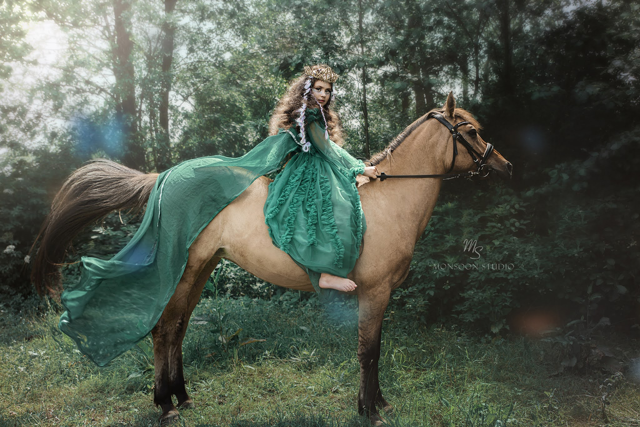 sesja w stadninie, sesja z koniem Warszawa, fotograf Serock, zdjęcia artystyczne