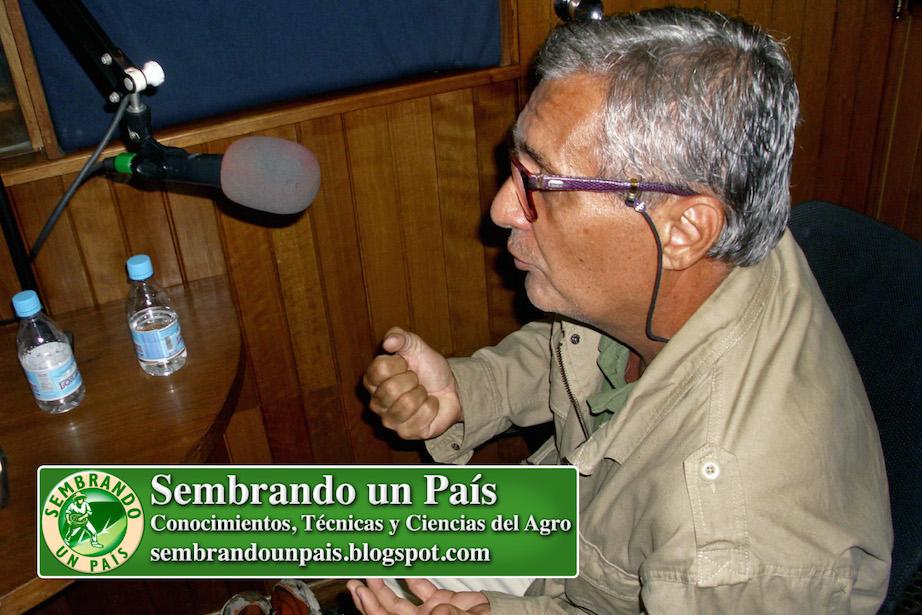 Francisco Afonso Concepción Productor de TV
