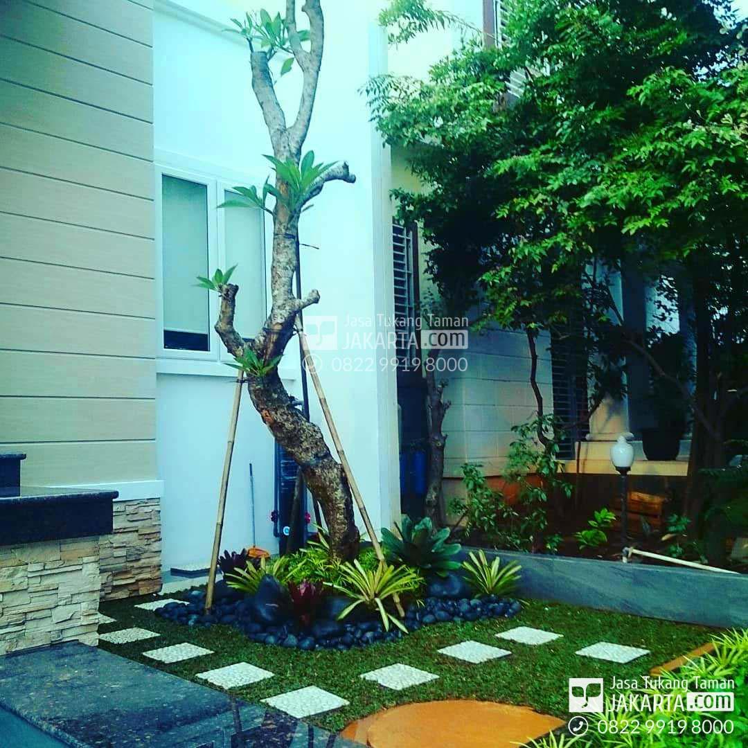 taman minimalis - tukang taman minimalis modern