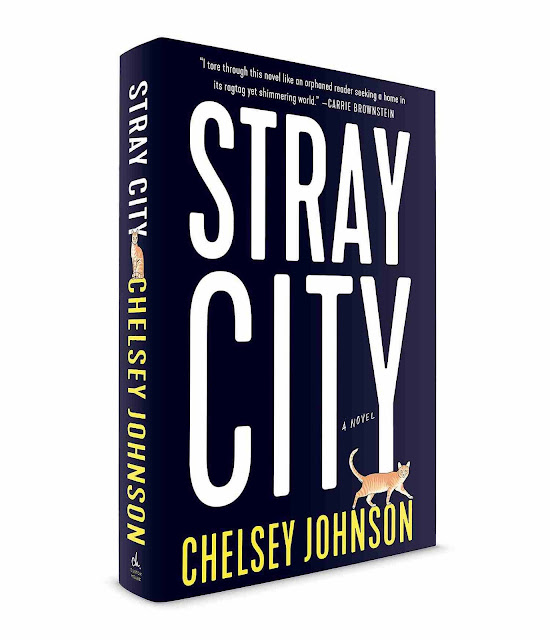 Stray City A Novel valentine day book