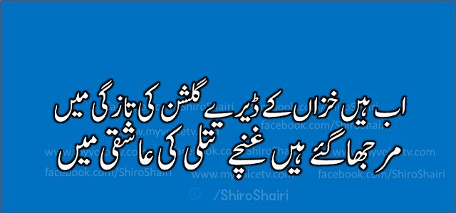 خوبصورت اردو شاعری : اب ہیں خزاں کے ڈیرے گلشن کی تازگی میں