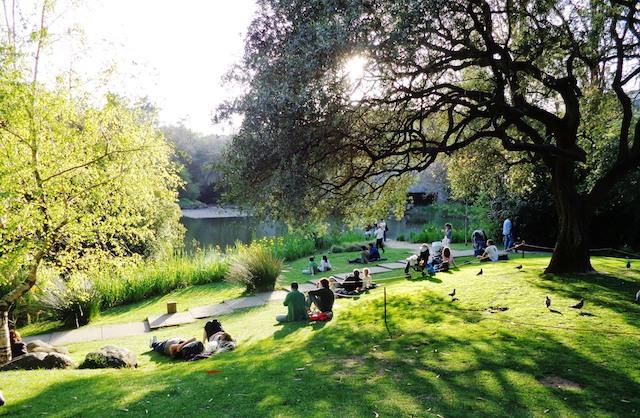 Jardim da Fundação Calouste