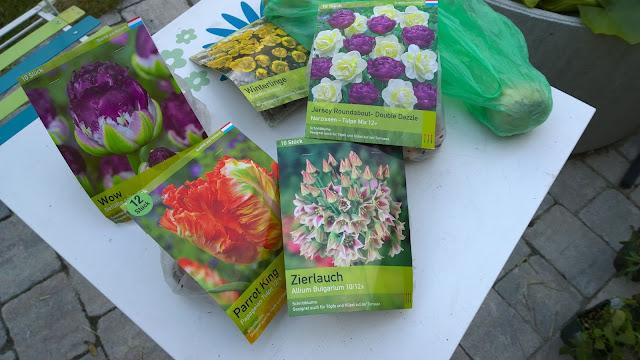 Blumenzwiebeln für ein buntes Frühlingserwachen 2017 (c) by Joachim Wenk