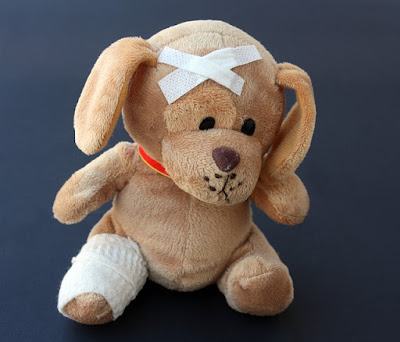 toy dog with bandages