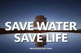water captions quotes