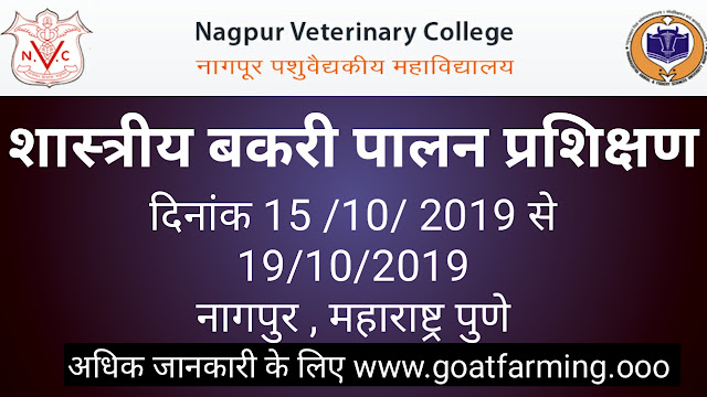 Goat Farming Training at Nagpur Maharashtra
