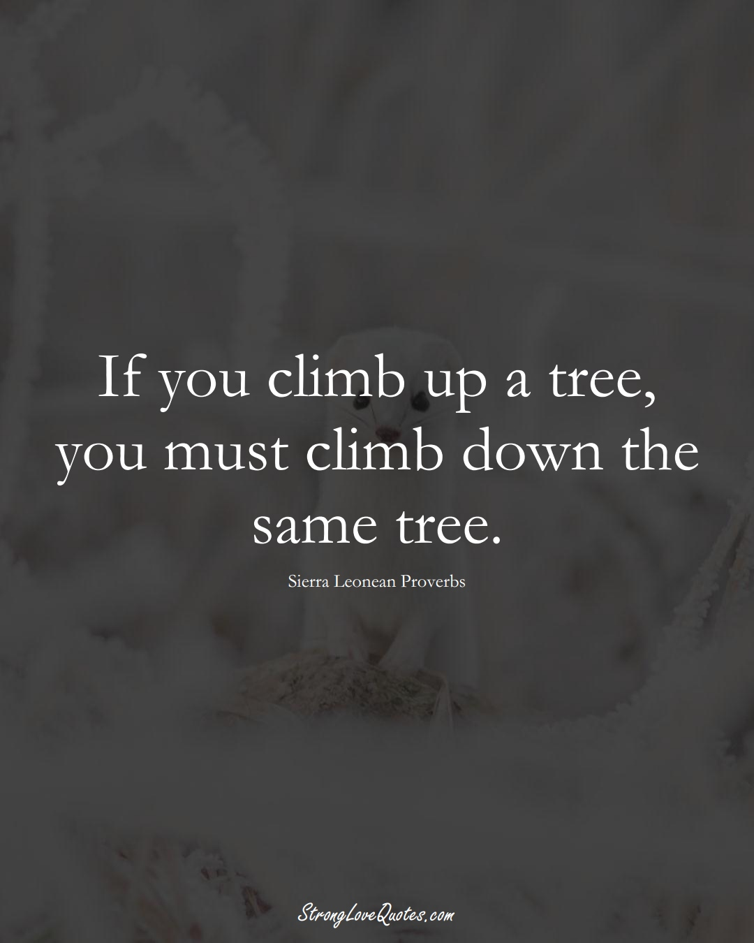 If you climb up a tree, you must climb down the same tree. (Sierra Leonean Sayings);  #AfricanSayings