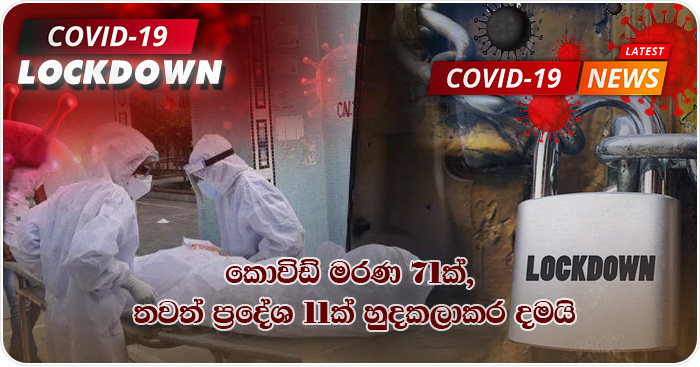 covid deaths and lockdown areas