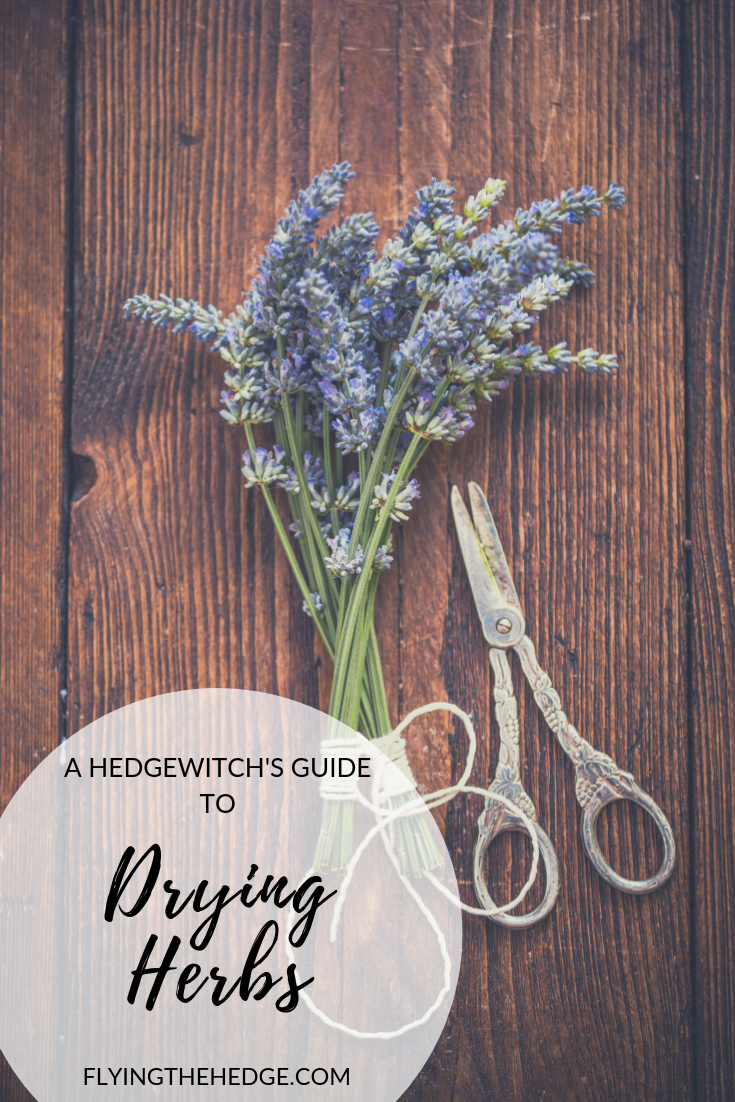 A Hedgewitch's Guide to Drying Herbs