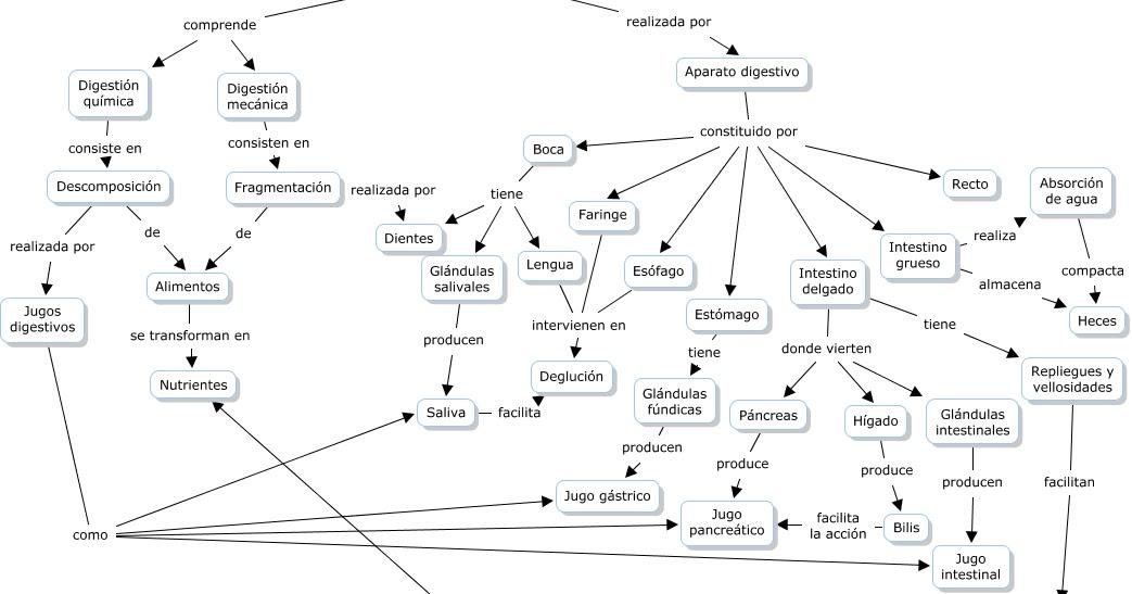 Leccion de anatomia y masturbacion con un vibrador masajeador - 1 4