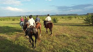 Botswana, riitta reissaa, ratsastusmatka, ratsastussafari, horsexplore