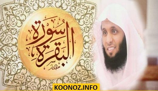 تحميل القران الكريم بصوت منصور السالمي كامل