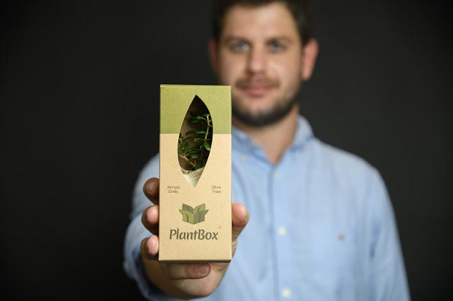 Μικροσκοπικά ελαιόδεντρα από την Πελοπόννησο σε όλο τον κόσμο