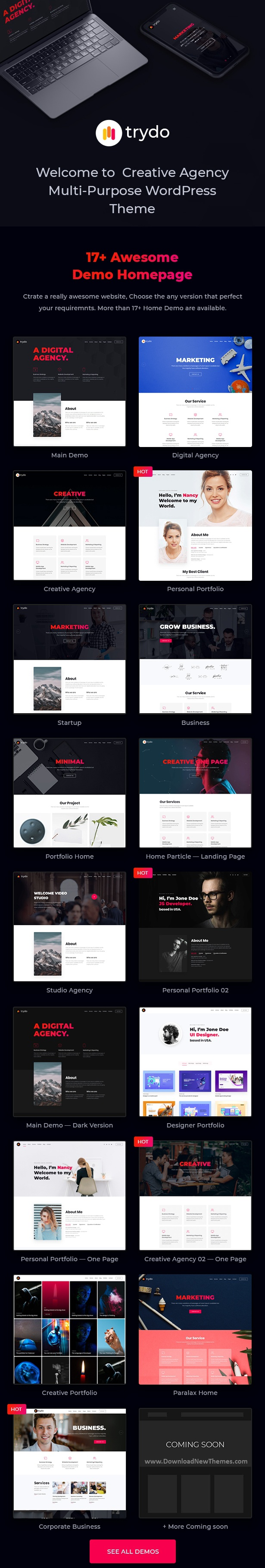 Creative Agency & Portfolio WordPress Theme