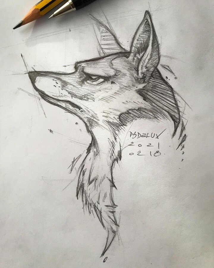 11-Young-Wolf-Psdelux-www-designstack-co