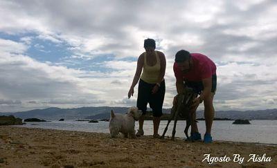 Foto de un paseo en la playa con nuestras perras