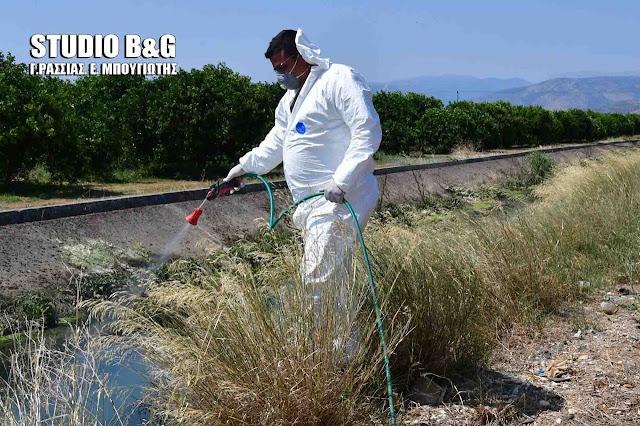 Ο Δήμος Άργους Μυκηνών εντατικοποιεί την μάχη για την καταπολέμηση των κουνουπιών