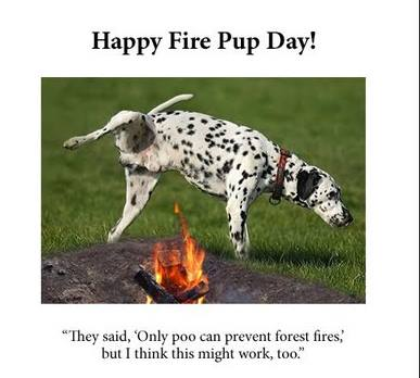 National Fire Pup Day Wishes Images
