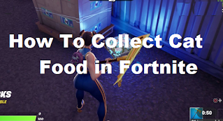 How to collect cat food in fortnite Season 7, Read here