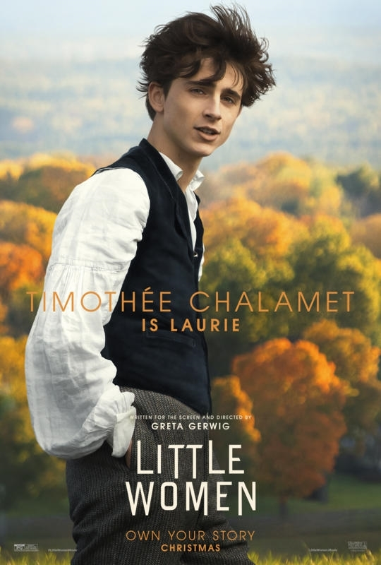 little women poster timothee chalamet
