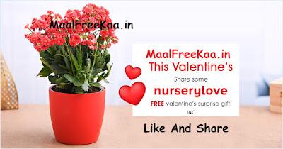 Valentine's Surprise Gift