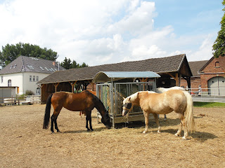 Two horses standing infront of a large hay feeder with a house and barn in the background