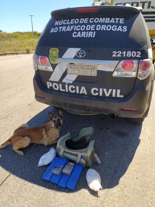 Polícia Civil prende no Crato mulher suspeita de tráfico interestadual de drogas