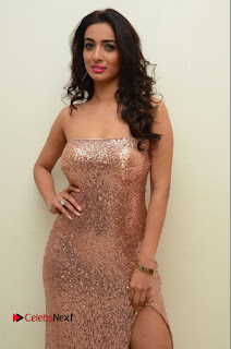Actress Heena Panchal Pictures in Long Dress at Thikka Audio Launch  0106.JPG