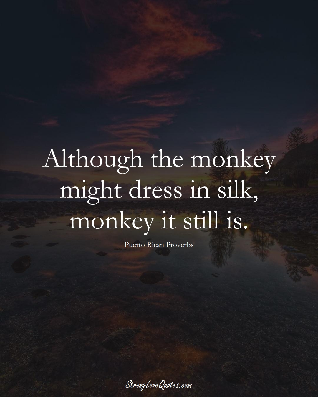 Although the monkey might dress in silk, monkey it still is. (Puerto Rican Sayings);  #CaribbeanSayings